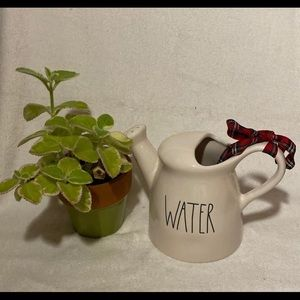 "Rae Dunn Pottery ""WATER"" Watering Can"